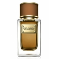 Dolce & Gabbana Velvet Exotic Leather by Dolce & Gabbana