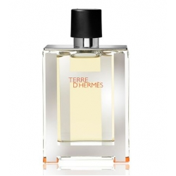 Terre D'Hermes Limited Edition by Hermes